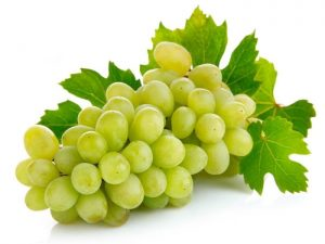 Grapes fruit to lose weight