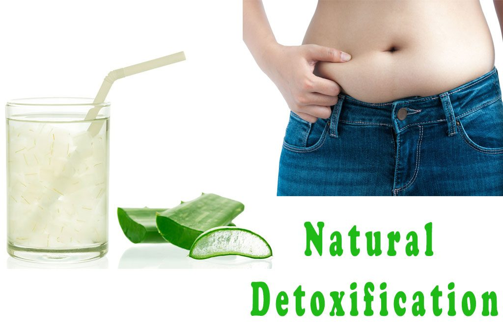 Natural Detoxifcation Aloe Vera Juice Weight Loss