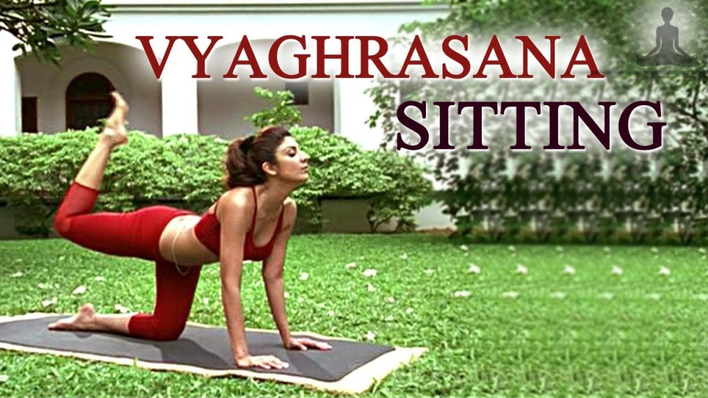 Vyaghrasana Shilpa Shetty Weight Loss Yoga