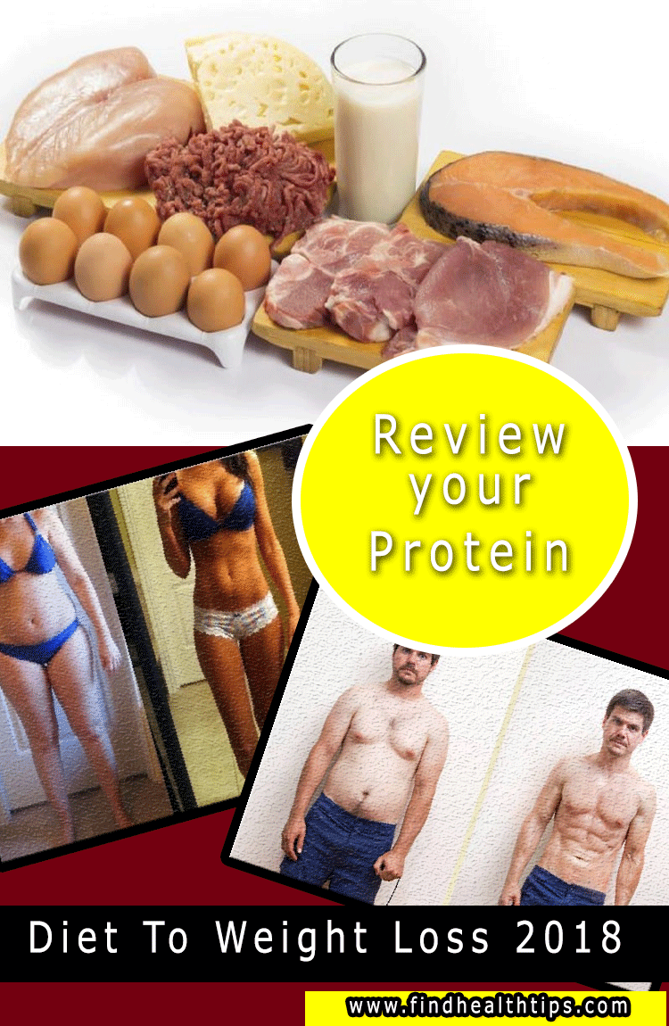 review protein diet tips weight loss 2018