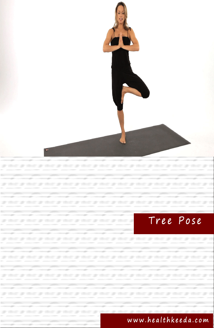 Tree Yoga Pose Weight Loss