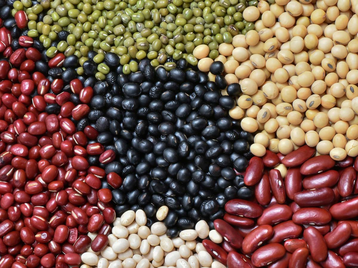 Legumes - cheapest protein foods in India
